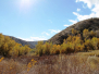 Big Morongo Canyon Preserve 2014