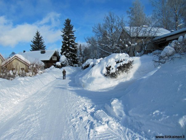 colours of Finland - blue sky and clean white snow