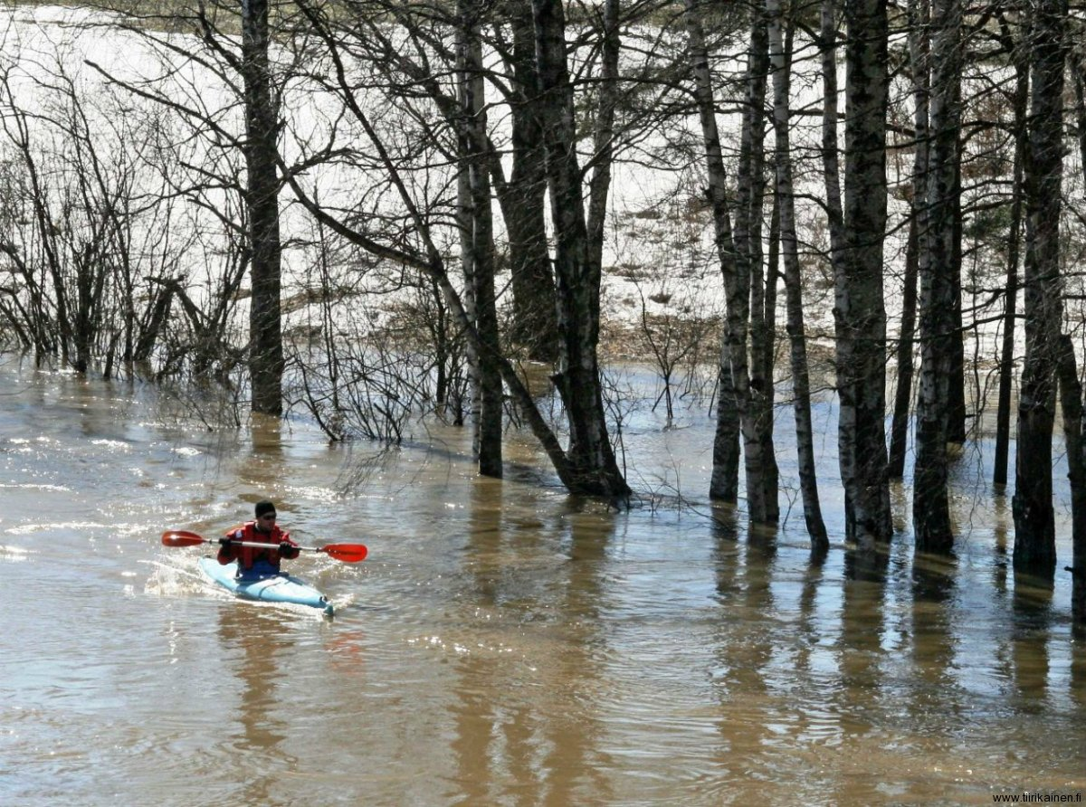 10-4-2011 - canoing along flooded Kerava River