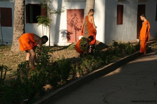 monks at work in laos