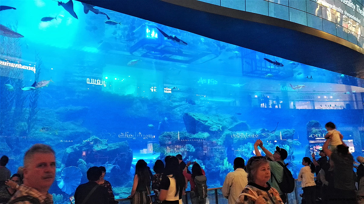 Huge-aquarium-inside-Dubai-Mall