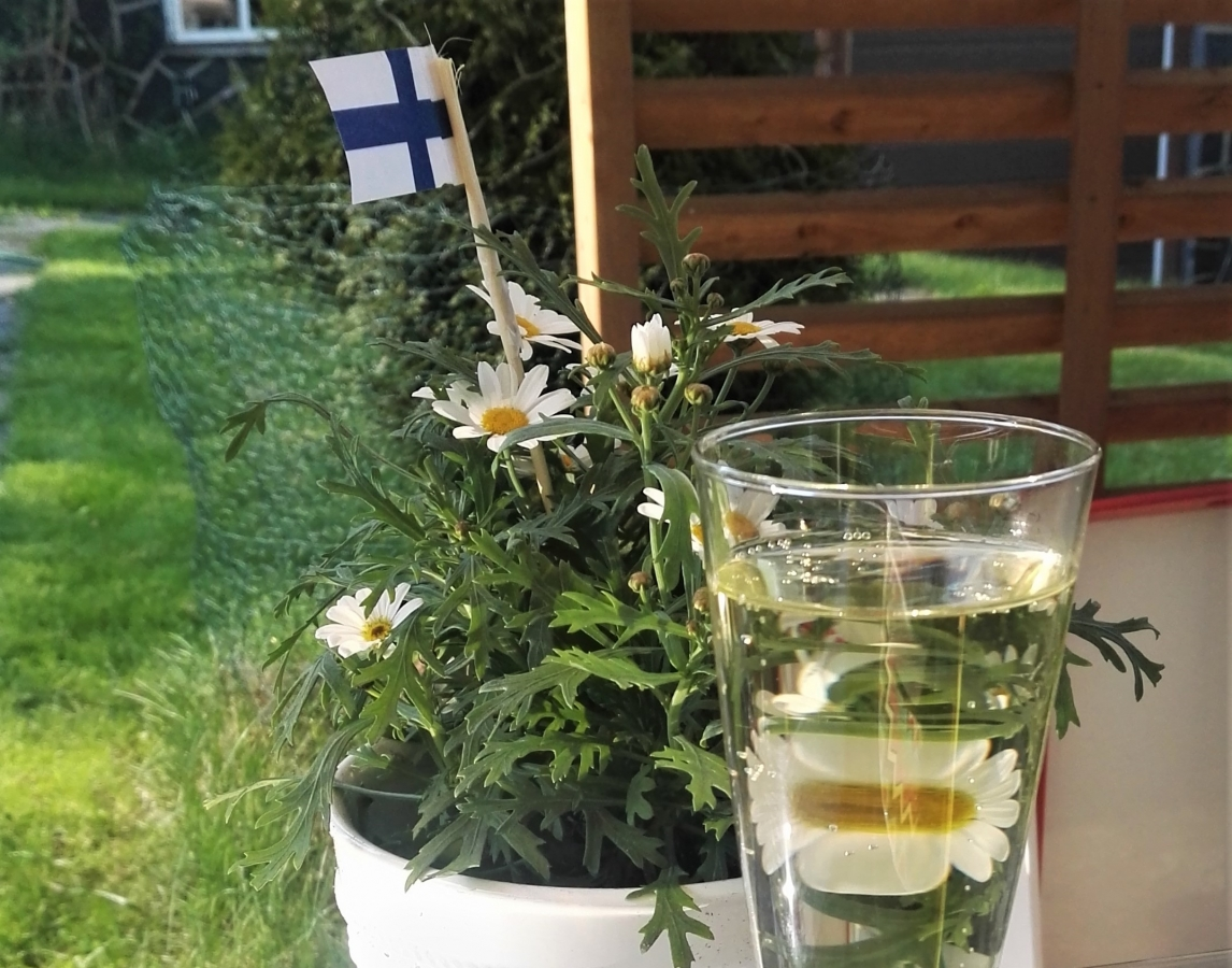 15-5-2018-congratulations-Finland-ice-hockey-and-warm-weather-